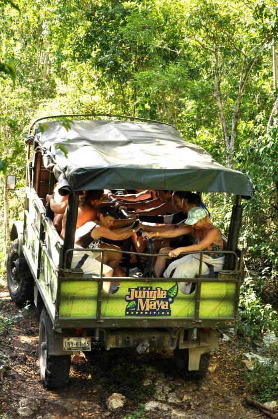 4-wheeling in the jungle