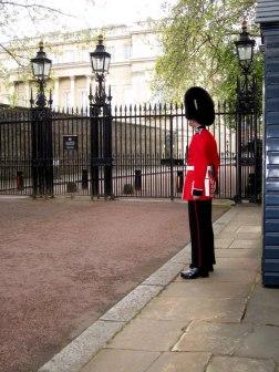 I found a British Guard!