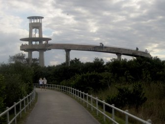 Observation tower in the Everglades