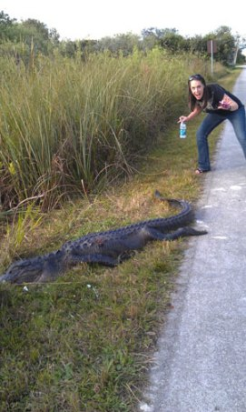 Leaving the Everglades. Yup, he was alive!