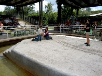 Gator Wresting at Gatorland