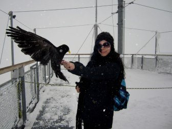 Shiran feeding the birds at Jungfraujoch