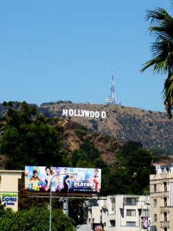 Hollywood sign in LA. View from the walk of fame