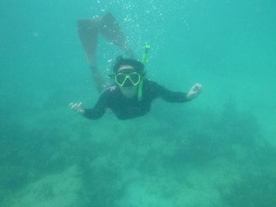 Snorkeling in Fajardo