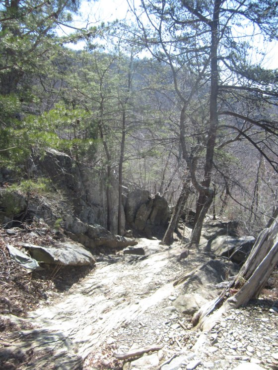 White Oak Canyon Hike